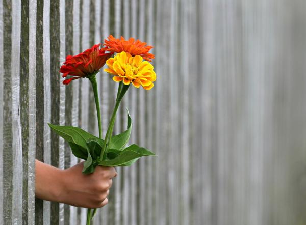 Từ bông hoa đến vũ trụ