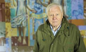 """David Attenborough: """"Cuối cùng, thiên nhiên vẫn thắng""""!"""