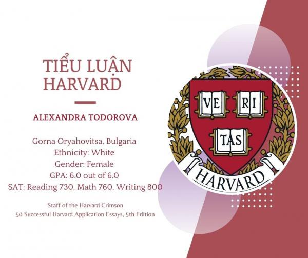 Tiểu luận Harvard - Alexandra Todorova