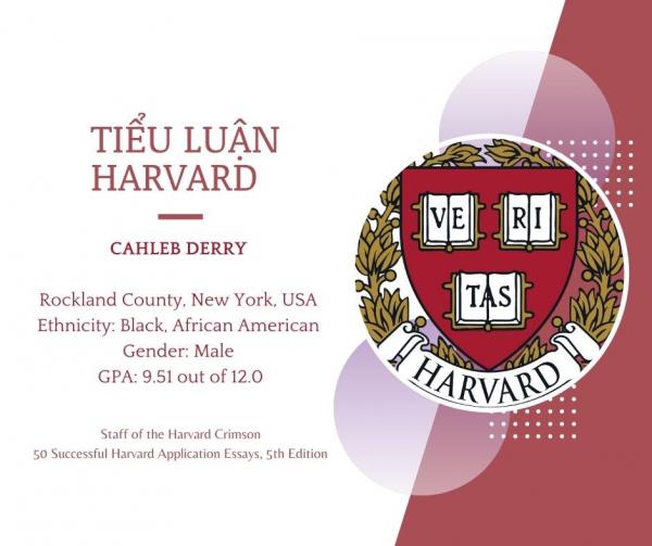Tiểu luận Harvard - Cahleb Derry