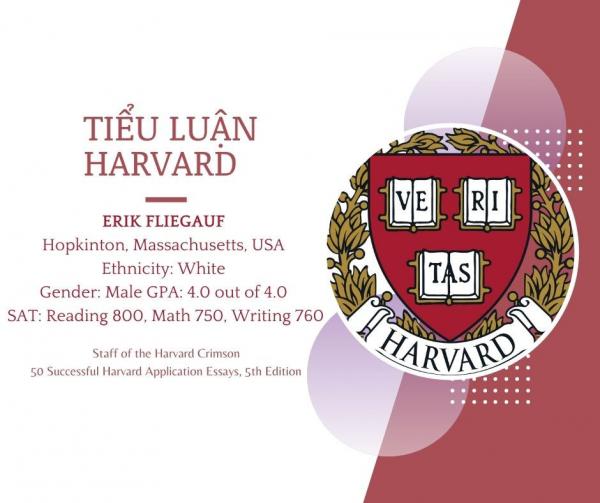 Tiểu luận Harvard - Erik Fliegauf