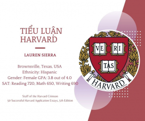 Tiểu luận Harvard - Lauren Sierra