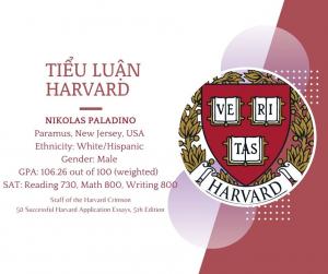 Tiểu luận Harvard - Nikolas Paladino
